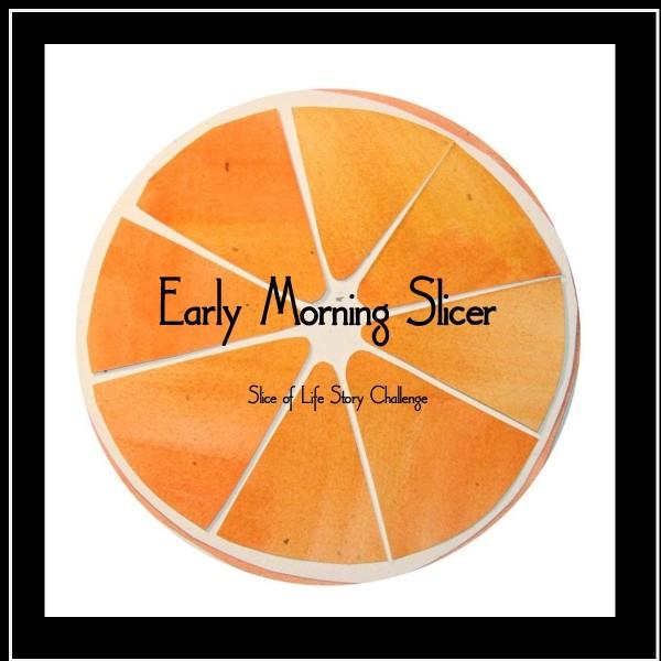 Early Morning Slicer