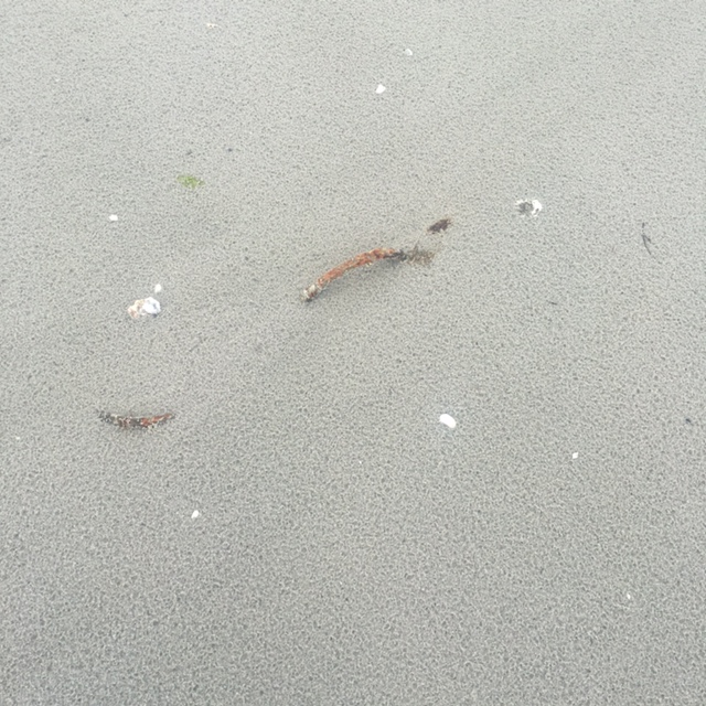 Handle in the sand